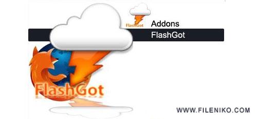 flash-got
