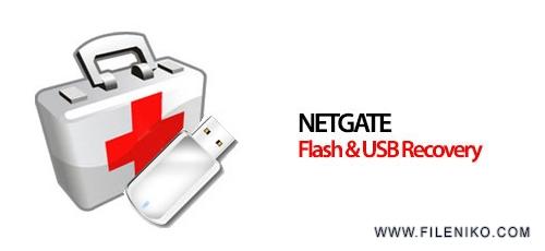 NETGATE-Flash