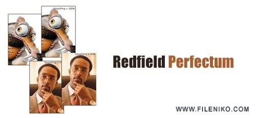 Redfield-Perfectum