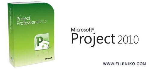 ms-project-2010