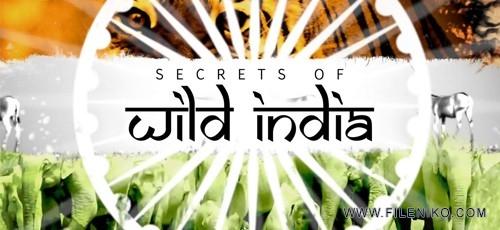 Secrets-of-Wild-India