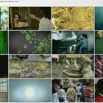 Stephen.Hawkings.Grand.Design.2012.Part2.720p.BluRay.x264.www.fileniko.com.mkv_thumbs_[2015.02.22_11.12.38]