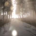 دانلود بازی Lex Mortis برای PC اکشن بازی بازی کامپیوتر ترسناک ماجرایی