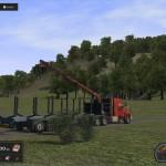 Professional-Lumberjack-2015-2