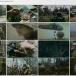 دانلود مستند ویتنام Vietnam in HD 2011 با کیفیت BluRay 720p مالتی مدیا مستند