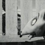 Frankenweenie.2012.www.fileniko.com.01