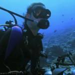 دانلود مستند سفر به بهشت کوسه ها Journey To Shark Eden دوبله فارسی مالتی مدیا مستند
