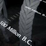 دانلود مستند  BBC: First Life 2010 نخستین زندگی با زیرنویس فارسی مالتی مدیا مستند