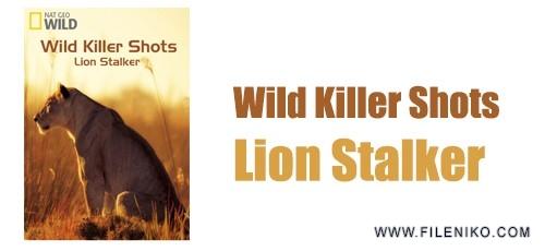 wild-killer-shots-lion-stalker