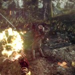 image_the_witcher_3_wild_hunt-22282-2651_0020