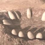 دانلود مستند  Planet Dinosaur 2011 سیاره دایناسور دوزبانه دوبله فارسی+انگلیسی مالتی مدیا مستند