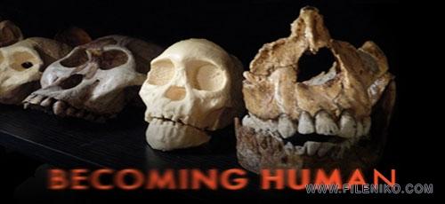 دانلود مستند Nova: Becoming Human 2011 انسان شدن با زیرنویس فارسی