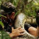 دانلود مستند Eaten Alive Anaconda 2014 زنده خواری آناکوندا مالتی مدیا مستند
