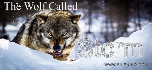 wolfCalledStorm_fileniko