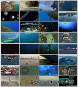 دانلود مستند Planet Ocean 2012 دوبله فارسی مالتی مدیا مستند