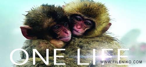 onelifeheader-fileniko