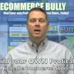 دانلود eCommerce Bully Home Study Course by Mark Mathis دوره آموزشی تجارت الکترونیک آموزشی مالتی مدیا مدیریت و بازاریابی