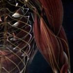 دانلود مجموعه مستند Drugged 2012 مواد مخدر مالتی مدیا مستند