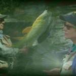دانلود The New Fly Fishing Basics آموزش ماهیگیری آموزشی مالتی مدیا ورزشی و تناسب اندام