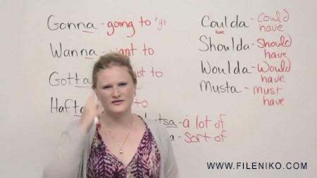 دانلود مجموعه ویدویی آموزش زبان 250-151 EngVid بخش 3 آموزش زبان مالتی مدیا