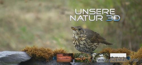 Nature.3D.Banner