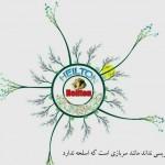 دانلود آموزش تصویری Visual Basic به زبان فارسی آموزش برنامه نویسی مالتی مدیا