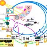 دانلود LNPTE Basic Electronics Training - آموزش مبانی الکترونیک برق مالتی مدیا