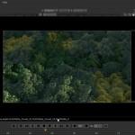 دانلود Digital Tutors Building a Realistic Aerial Forest Scene in 3ds Max ساخت یک صحنه ی هوایی واقعی جنگل در تری دی اس مکس آموزش انیمیشن سازی و 3بعدی آموزش ساخت بازی آموزشی مالتی مدیا