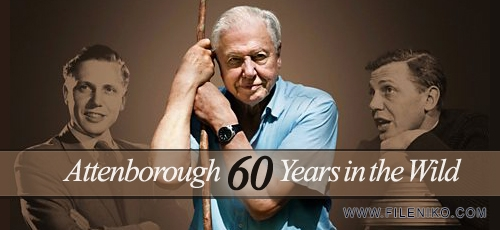 Attenborough.60.Years.in.the.Wild.Banner