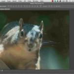 دانلود Infinite Skills Learning Adobe Photoshop CC آموزش فتوشاپ سی سی آموزش گرافیکی مالتی مدیا