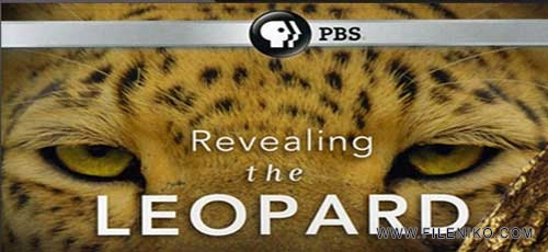 Revealing-the-Leopard-2010