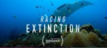 racing-extinction