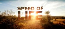 speed.of_.life_banner