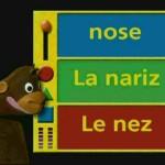 دانلود مجموعه آموزش زبان انگلیسی کودکان Baby Einstein آموزش زبان مالتی مدیا