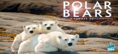 دانلود مستند Polar Bears: A Summer Odyssey 2012 خرسهای قطبی: یک سفر تابستانی