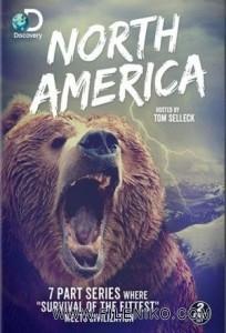 دانلود سریال مستند North America آمریکای شمالی مالتی مدیا مستند