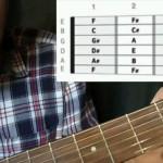 دانلود فیلم آموزش مقدماتی گیتار صوتی و الکتریکی آموزش موسیقی و آهنگسازی مالتی مدیا