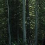 دانلود فیلم سینمایی Diablo با زیرنویس فارسی اکشن فیلم سینمایی ماجرایی مالتی مدیا هیجان انگیز