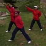 دانلود Aerobic Video Training ،فیلم آموزشی ایروبیک به زبان فارسی آموزشی مالتی مدیا ورزشی و تناسب اندام