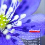 دانلود ماهنامه تخصصی کامپیوتر و فناوری اطلاعات دانشجویار-شماره ۱۲ مالتی مدیا مجله