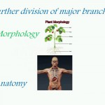 Sanet.me_Basics of Biology.mp4_snapshot_02.21_[2016.04.10_10.10.15]