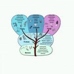 دانلود فیلم آموزش مفاهیم اساسی زیست شناسی گوناگون مالتی مدیا
