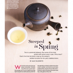 دانلود مجله ی  Saveur-April 2016 مالتی مدیا مجله