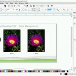 051 Getting started with color management.mp4_snapshot_03.41_[2016.06.16_11.06.47]