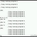 دانلود Learn Linux in 5 Days and Level Up Your Career - دوره آموزشی کامل لینوکس آموزش سیستم عامل آموزشی مالتی مدیا