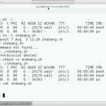 دانلود Lynda Linux: Bash Shell and Scripts فیلم آموزشی لینوکس: بش شل و اسکریپت آموزش سیستم عامل آموزشی مالتی مدیا