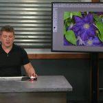 دانلود CreativeLive How to Create an Animated GIF in Photoshop فیلم آموزشی ساخت عکس های متحرک گیف در فتوشاپ آموزش گرافیکی آموزشی مالتی مدیا