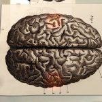 the-creative-brain-how-insight-works-screen4