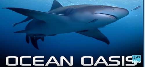 دانلود مستند Ocean Oasis 2000 بهشت اقیانوس