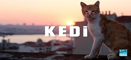 دانلود فیلم مستند Kedi 2016 با زیرنویس فارسی